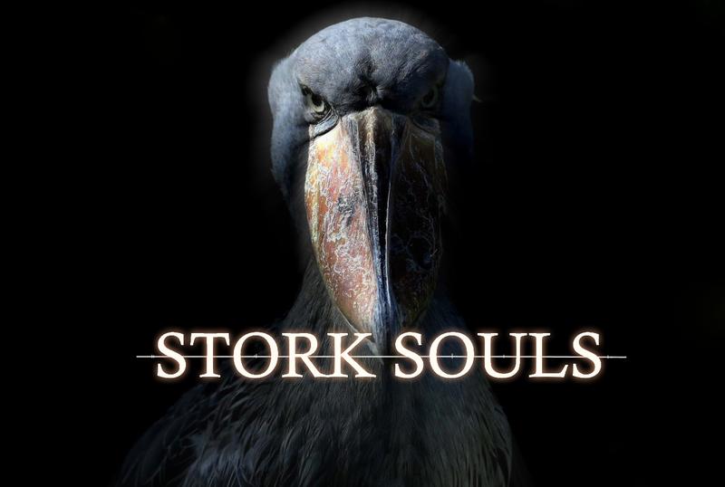 stork souls.png