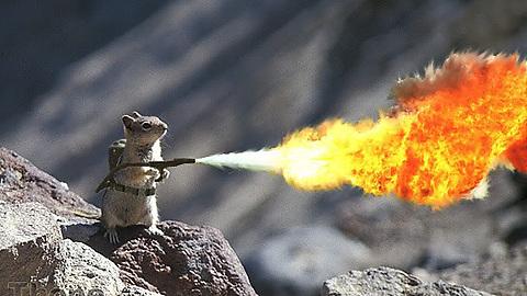 RamG_fire.jpg.cb62797037841ae4a838cebb07d5a677.jpg