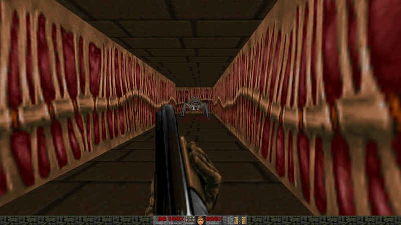 Screenshot_Doom_20180221_210831.png