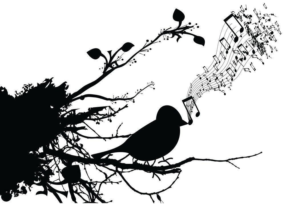 singing-bird-vector-349079.jpg.563f0820502a49649367fd1ee20078f3.jpg