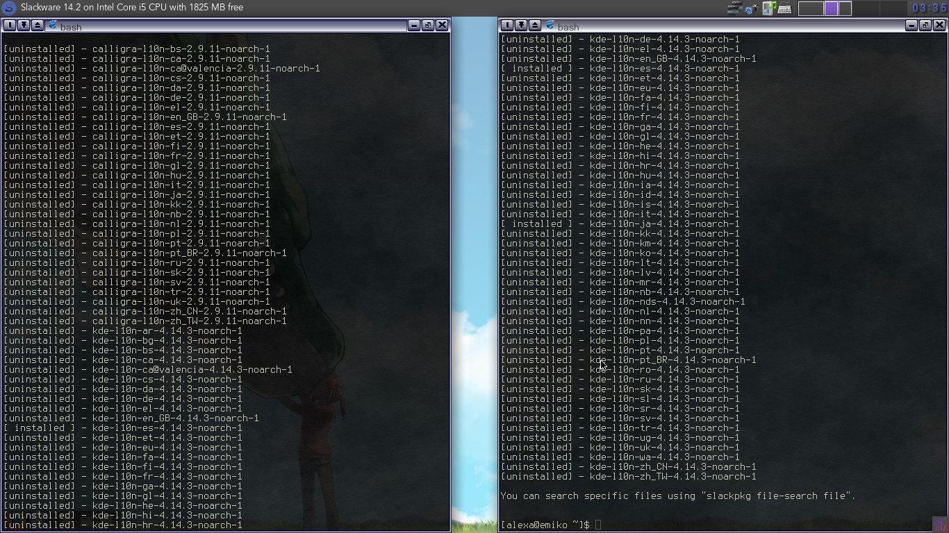 languages.jpg.223b900ace639eeae95e686df506fd0e.jpg