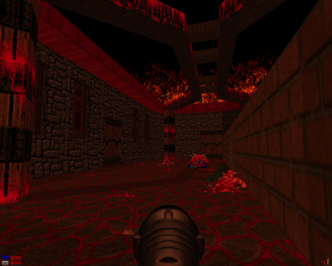 Screenshot_Doom_20181213_023040.png