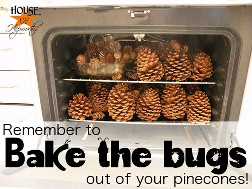 """""""Remember to Bake the Bugs out of your pinecones!"""""""